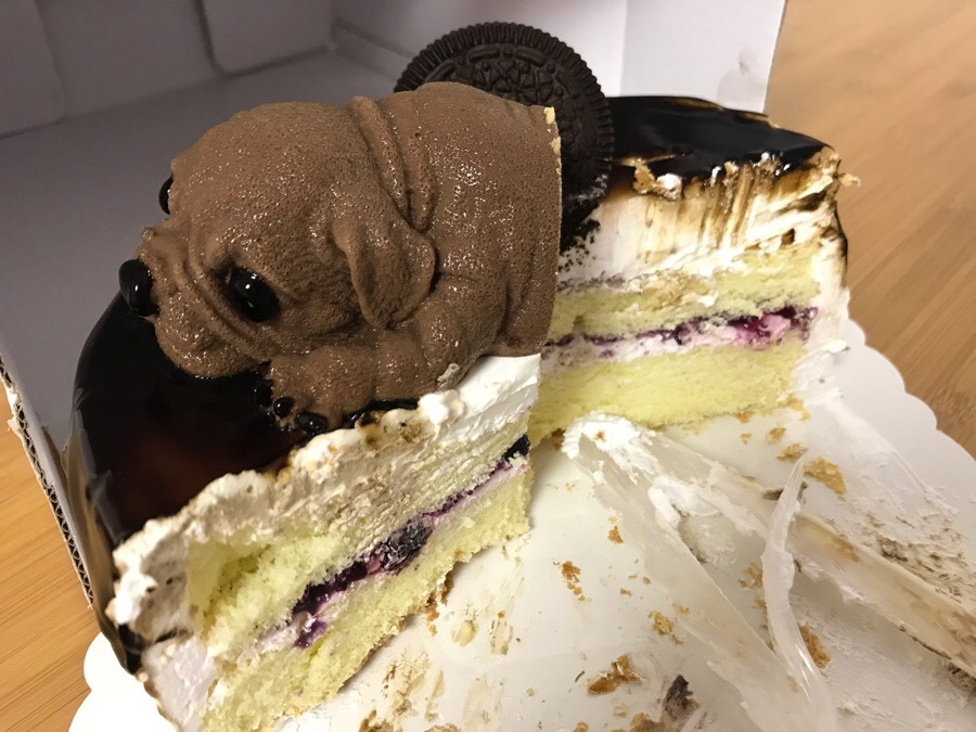 中国のリアルすぎる犬ケーキを食べてみた|リモートガール
